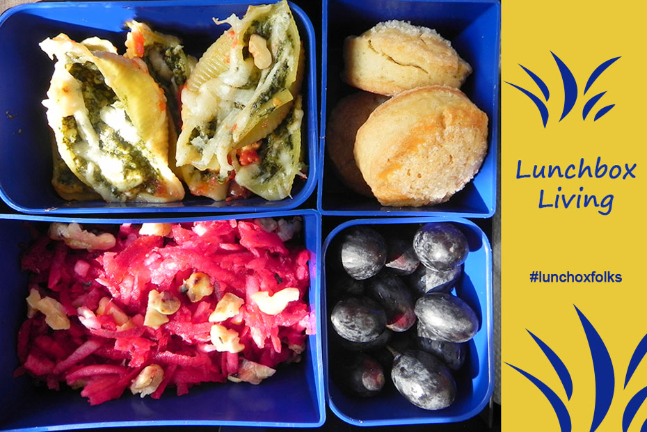 Lunchbox Concilioni Spinach