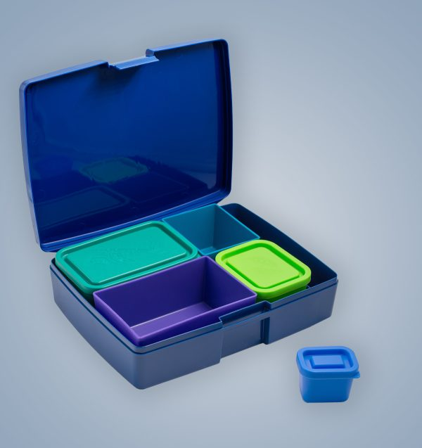 Кутияа храна Lunchbox Боровинка