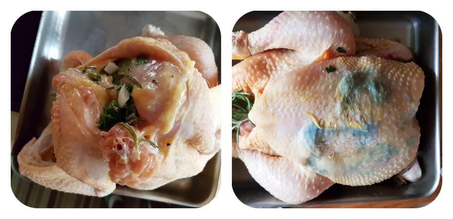 Chicken filling