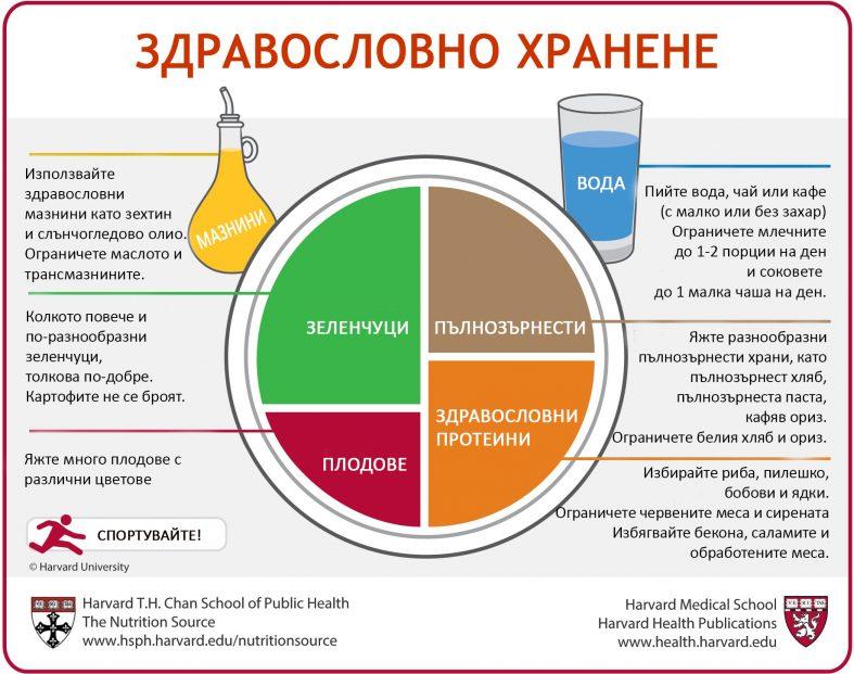 Чиията и Здравословно хранене