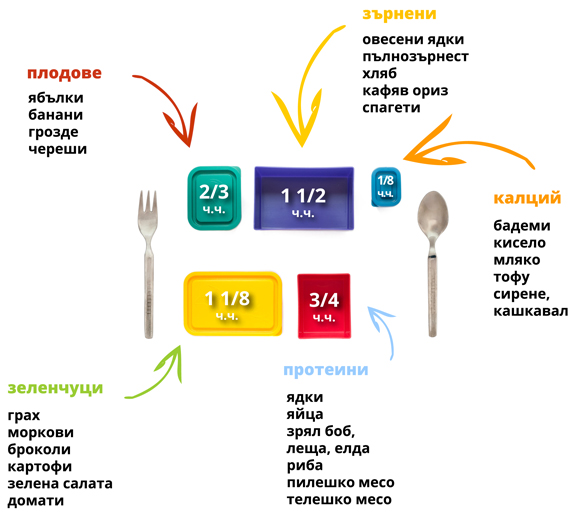 Portion Control With Lunchbox