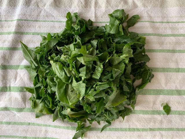 spinach-2