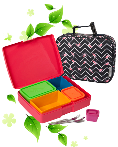 Lunchbox Pack Coral