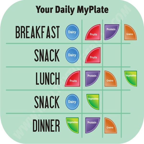 your-daily-myplate